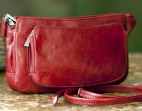 Hobo International Bella Cross-Body Bag